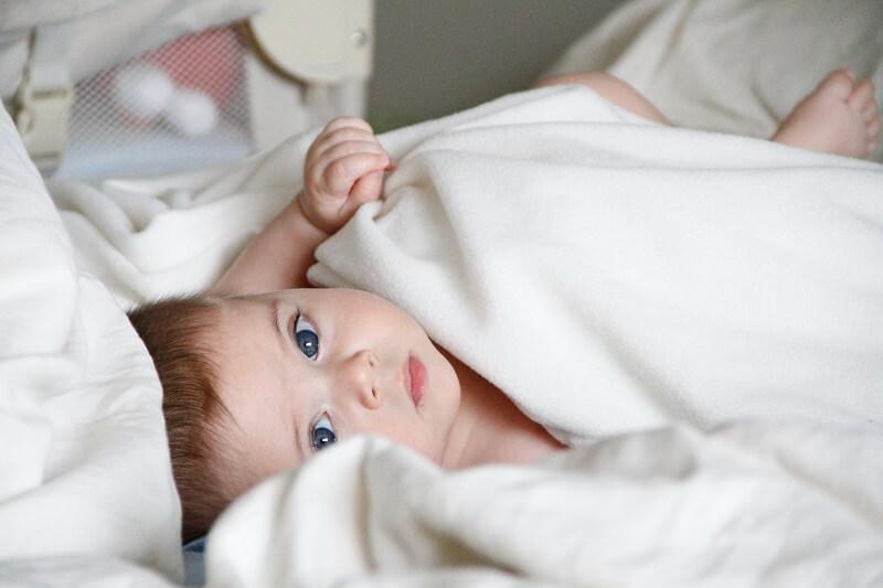 test et comparatif Mouche bébé