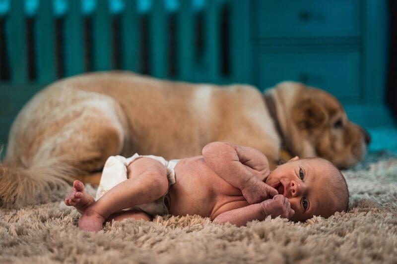 couche pour bébé